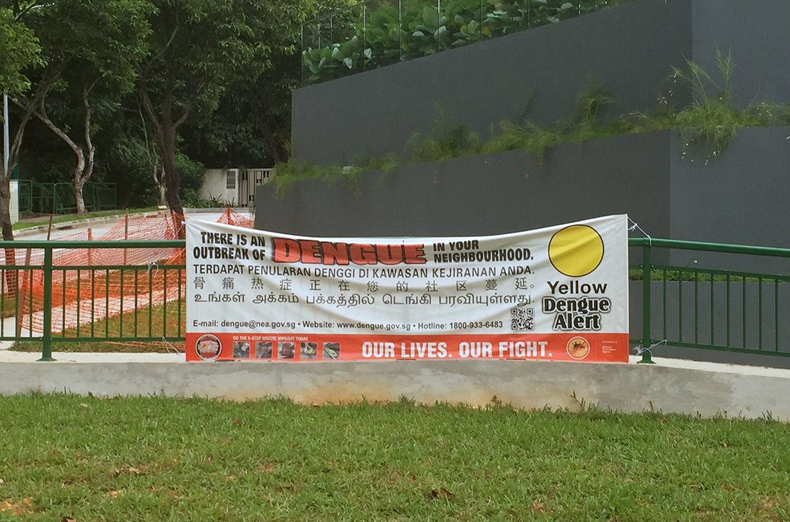 Предупреждение о лихорадке Денге, Сингапур