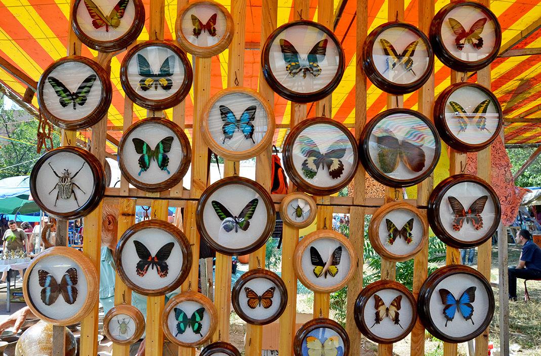 Блошиный рынок Еревана. Коллекционные бабочки