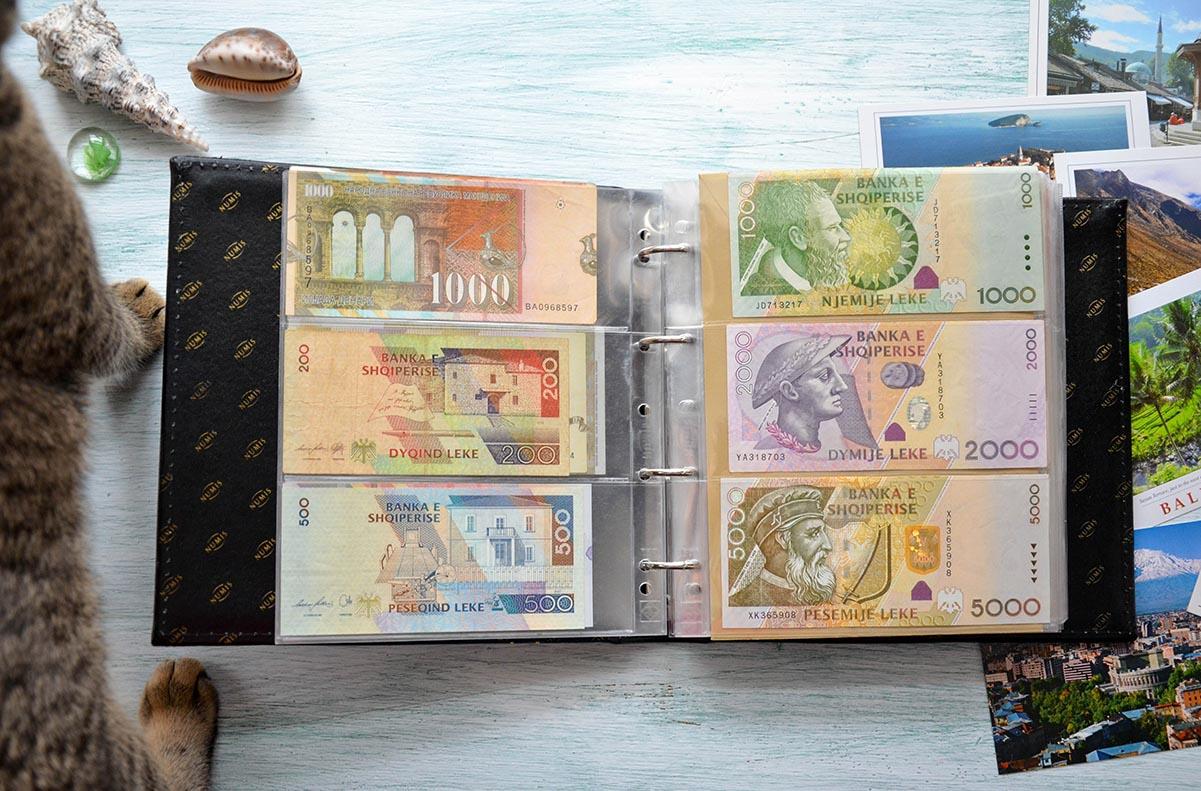 Сокровища путешественников: коллекция банкнот и монет из разных стран мира
