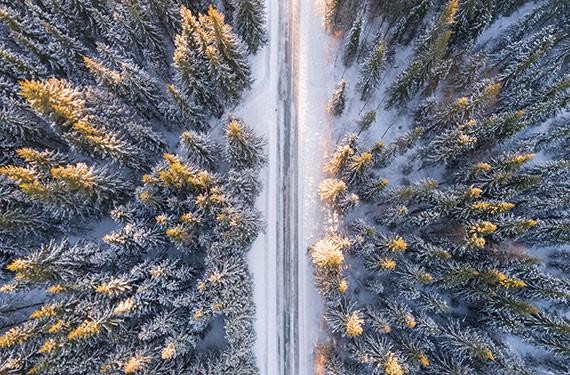 На границе России и Норвегии откроется природный парк