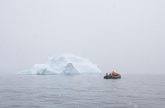 У берегов ОАЭ появятся айсберги