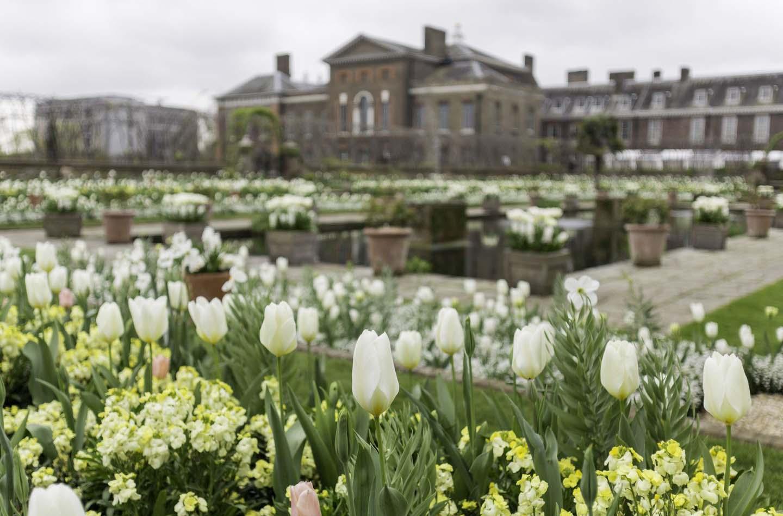 В Лондоне открылся Белый сад принцессы Дианы