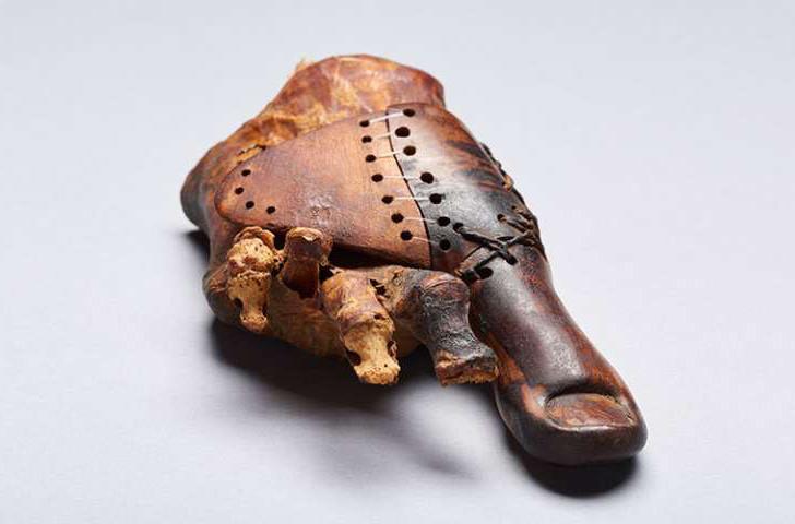 Швейцарские ученые обнаружили древний египетский протез