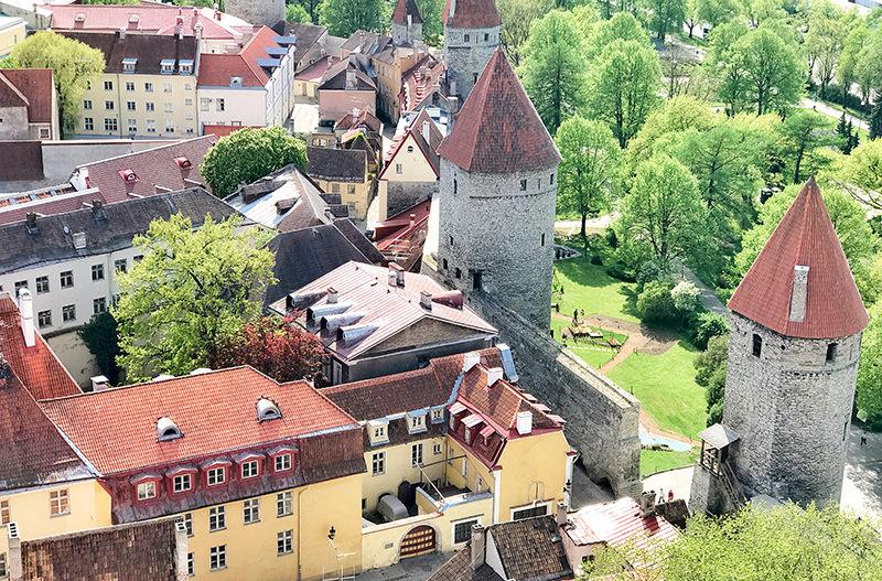 Старый город Таллин - вид сверху