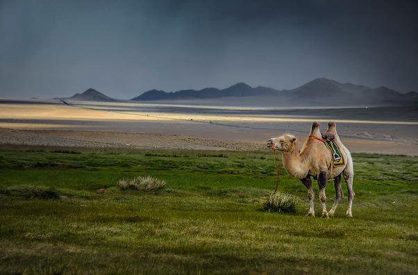Названы самые туристически перспективные страны мира