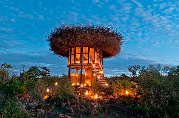 Кения приглашает заночевать в уютном птичьем гнезде