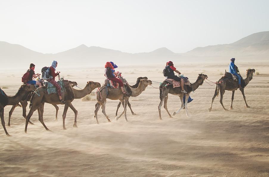 Куда сбежать от зимы: топ-10 направлений. Марокко