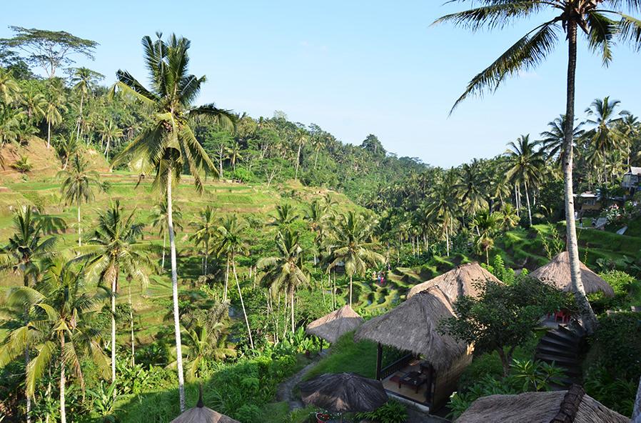 Куда сбежать от зимы: топ-10 направлений. Индонезия