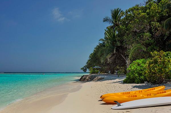 Мексиканский курорт ищет специалиста по приключениям