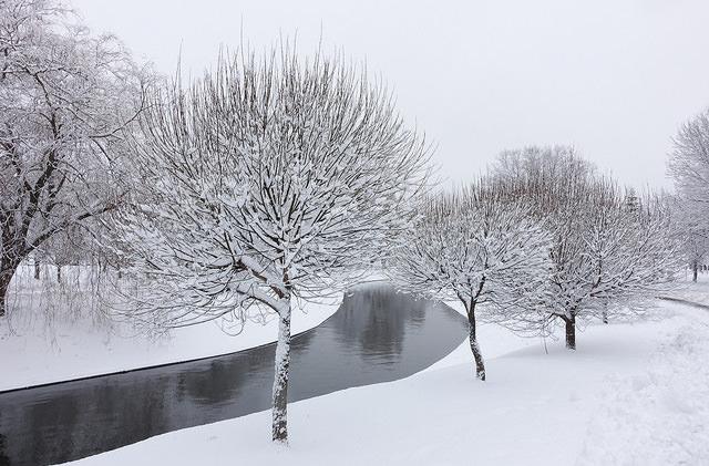Названы самые популярные направления этой зимы среди туристов из СНГ