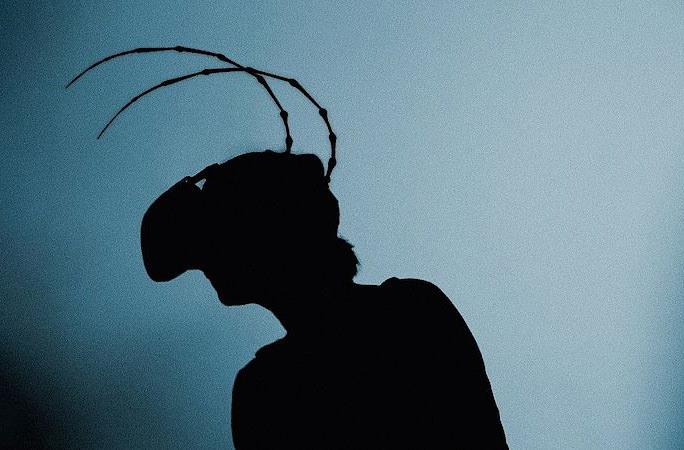 Прага приглашает на виртуальную инсталляцию повести Кафки