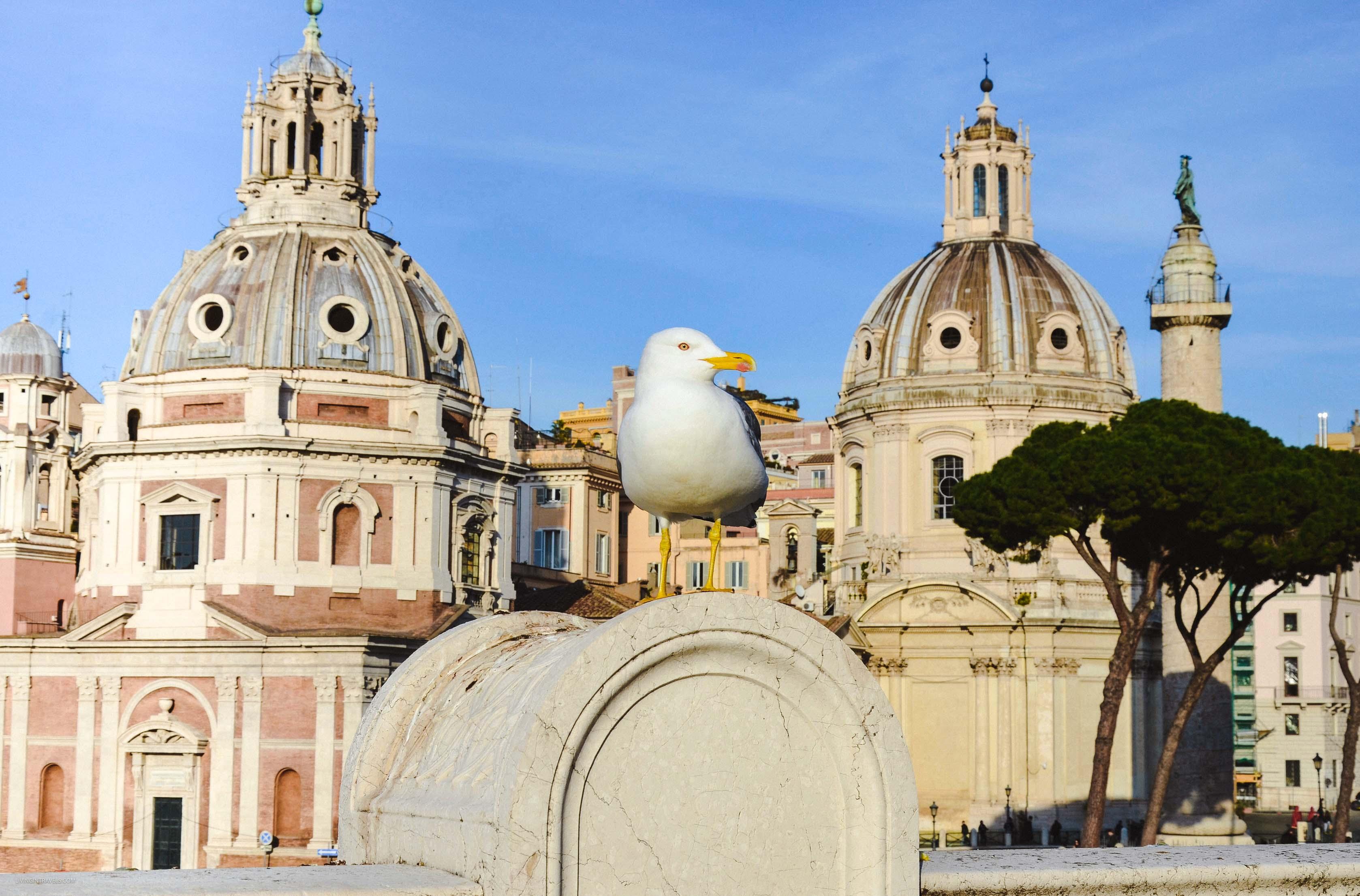 Монумент Витторио на Пьяцца Венеция. Рим для новичков или как увидеть город бесплатно (почти)