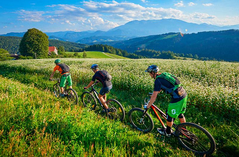 Словения проводит конкурс на велосипедного амбассадора