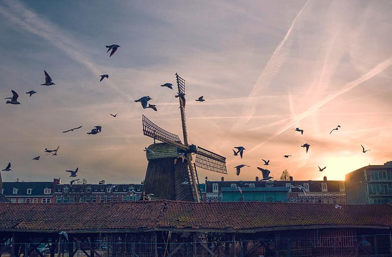 Вход в музеи Нидерландов будет бесплатным несколько дней