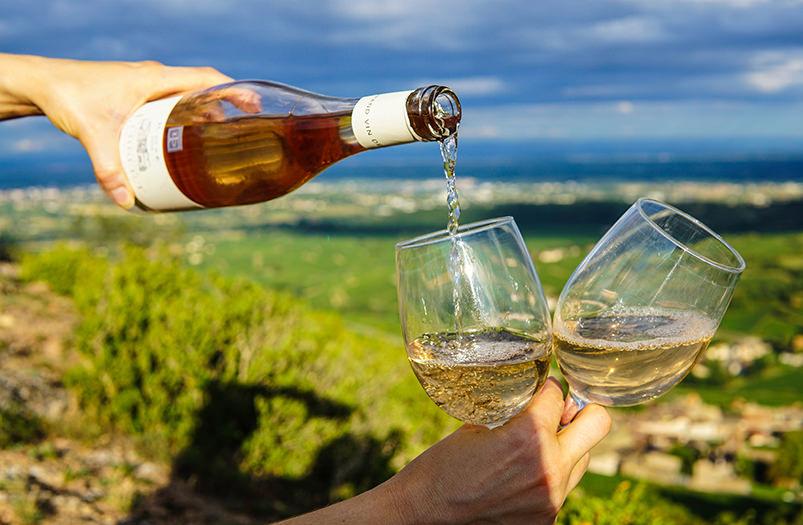 Италия приглашает на праздник вина