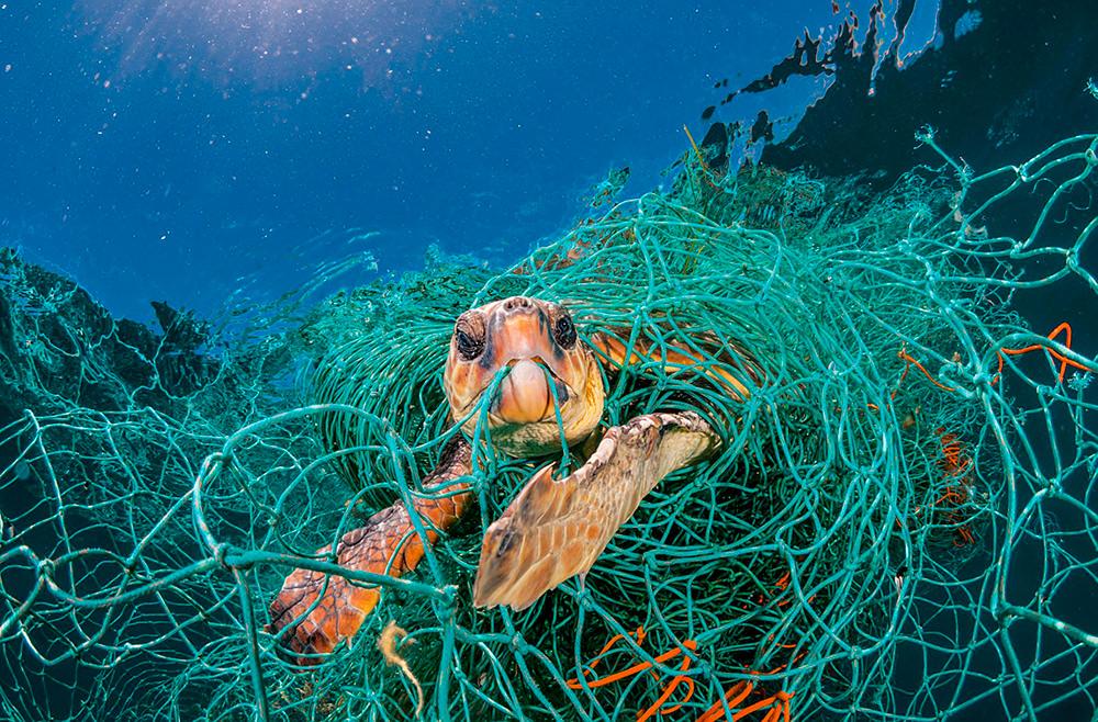 National Geographic посвятил номер проблеме пластика
