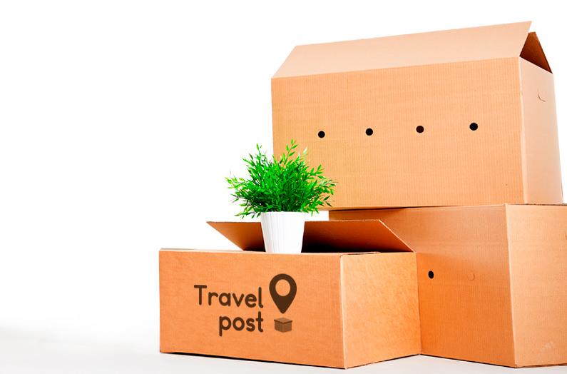В Украине запустили сервис доставки посылок с помощью путешественников