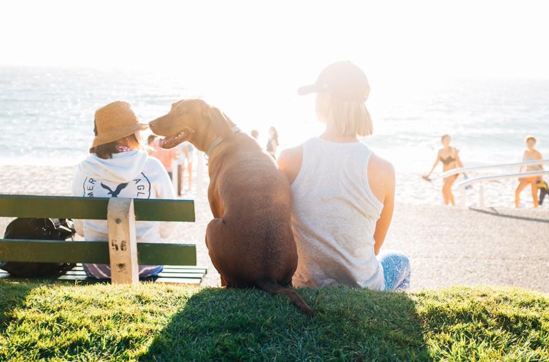 Названы лучшие нетрадиционные семейные направления для отдыха