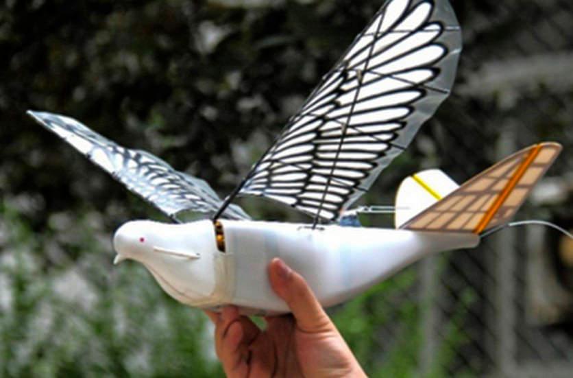 В Китае разработали дрон, имитирующий голубя