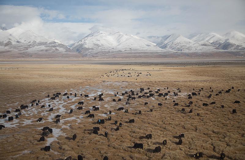 В Тибете появится три новых аэропорта