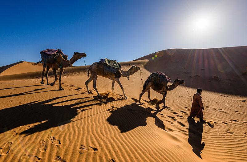 Wizz Air начнёт летать в Марокко