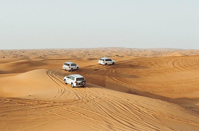 ОАЭ будет развивать направление экотуризма