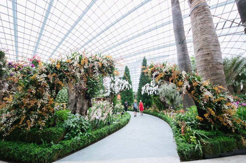 В Сингапуре пройдёт фестиваль садов