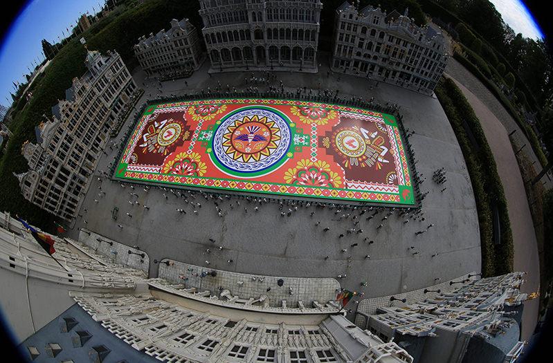 Главную площадь Брюсселя украсили ковром из живых цветов