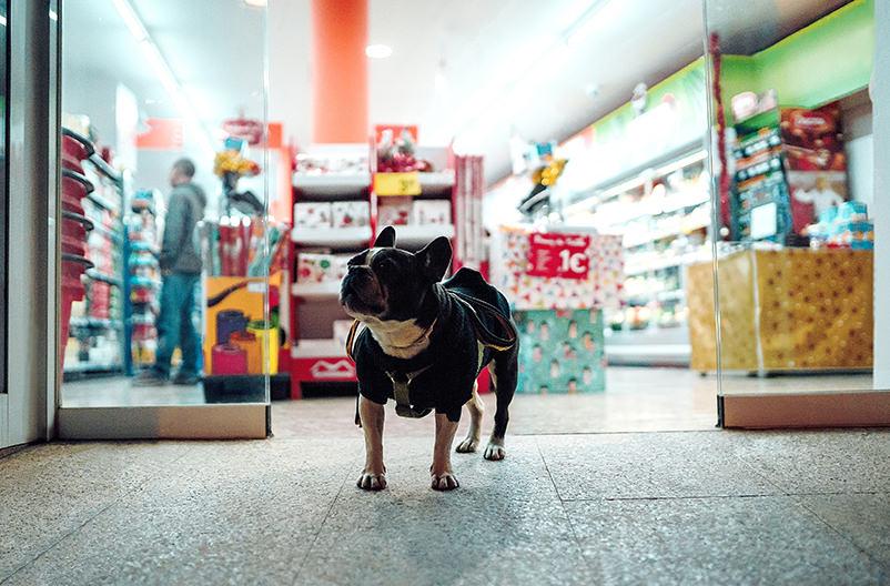 Супермаркет в Финляндии решил спасать людей от жары