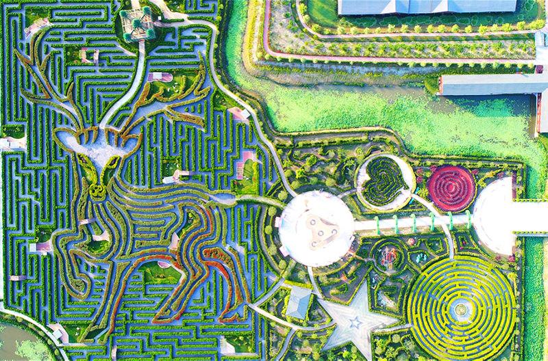 Зеленый лабиринт в Китае установил три мировых рекорда