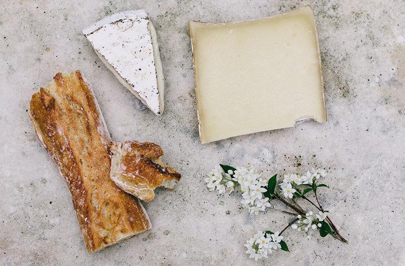 В Хорватии обнаружены останки старейшей в мире сыроварни