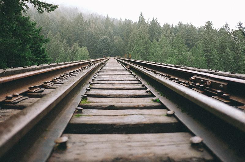 На поездах Швейцарии ввели проезд без билетов