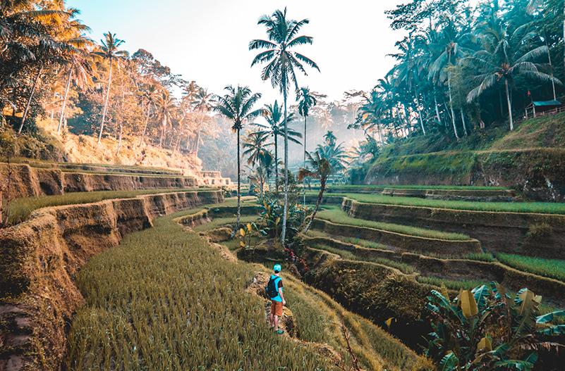 На Бали введут туристический налог