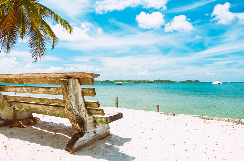 В Airbnb рассказали о весенних трендах путешествий