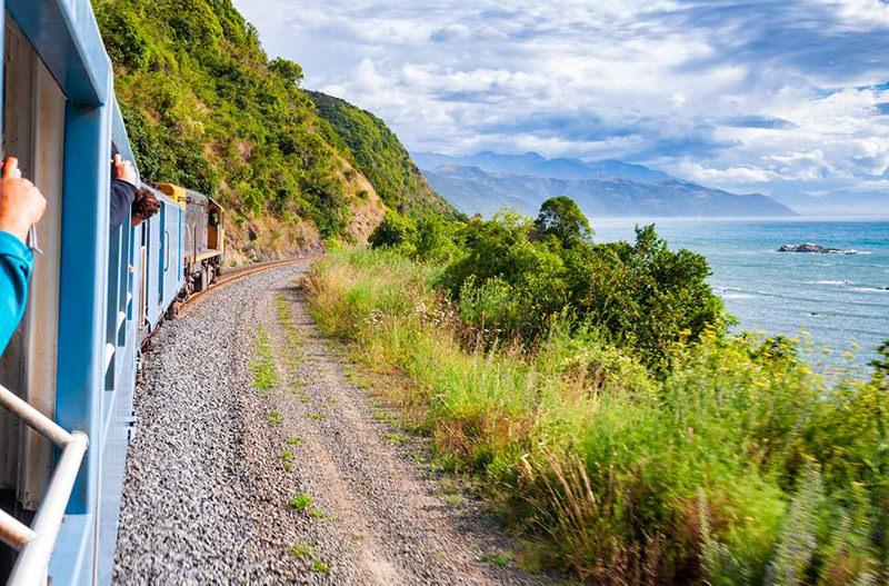 Ж/Д оператор Новой Зеландии закрыл открытые вагоны из-за любителей селфи