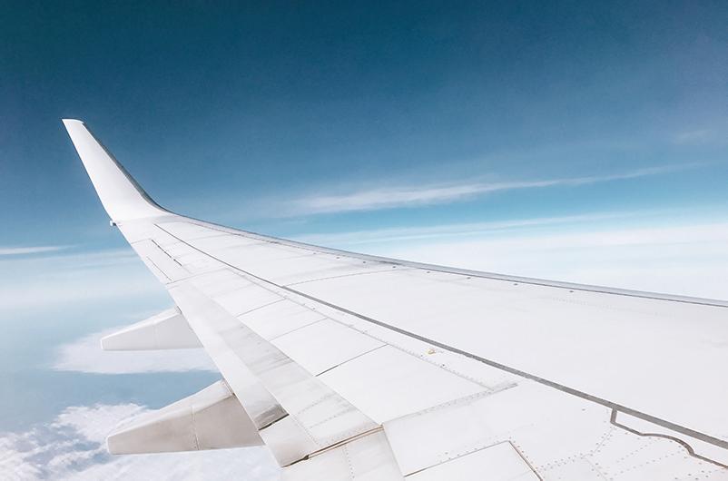 Названы лучшие авиакомпании мира по версии Skytrax