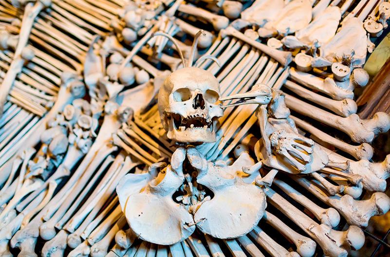Чешская костница запретит селфи