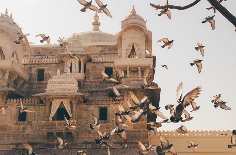 Индия запретила одноразовый пластик в радиусе 100 метров от достопримечательностей