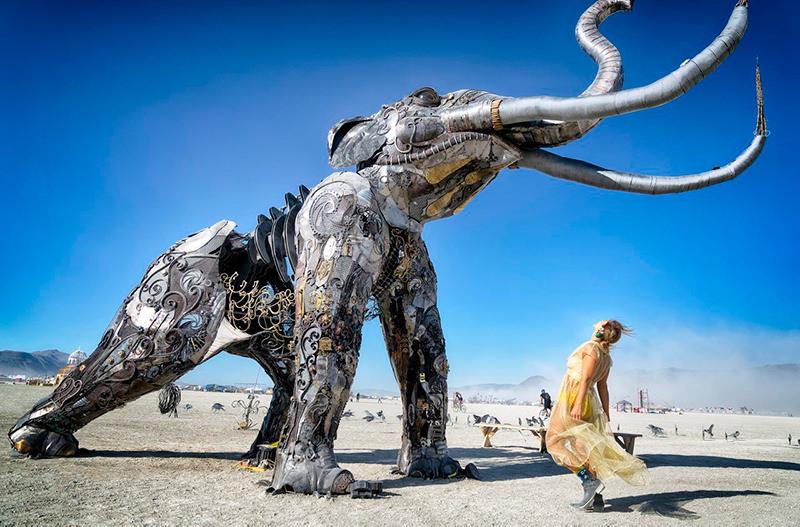 Скульптуры с фестиваля Burning Man начали выставлять по всему США