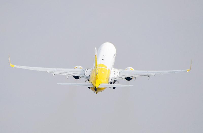 Bees Airline объявила 7 новых международных рейсов из Киева и Львова